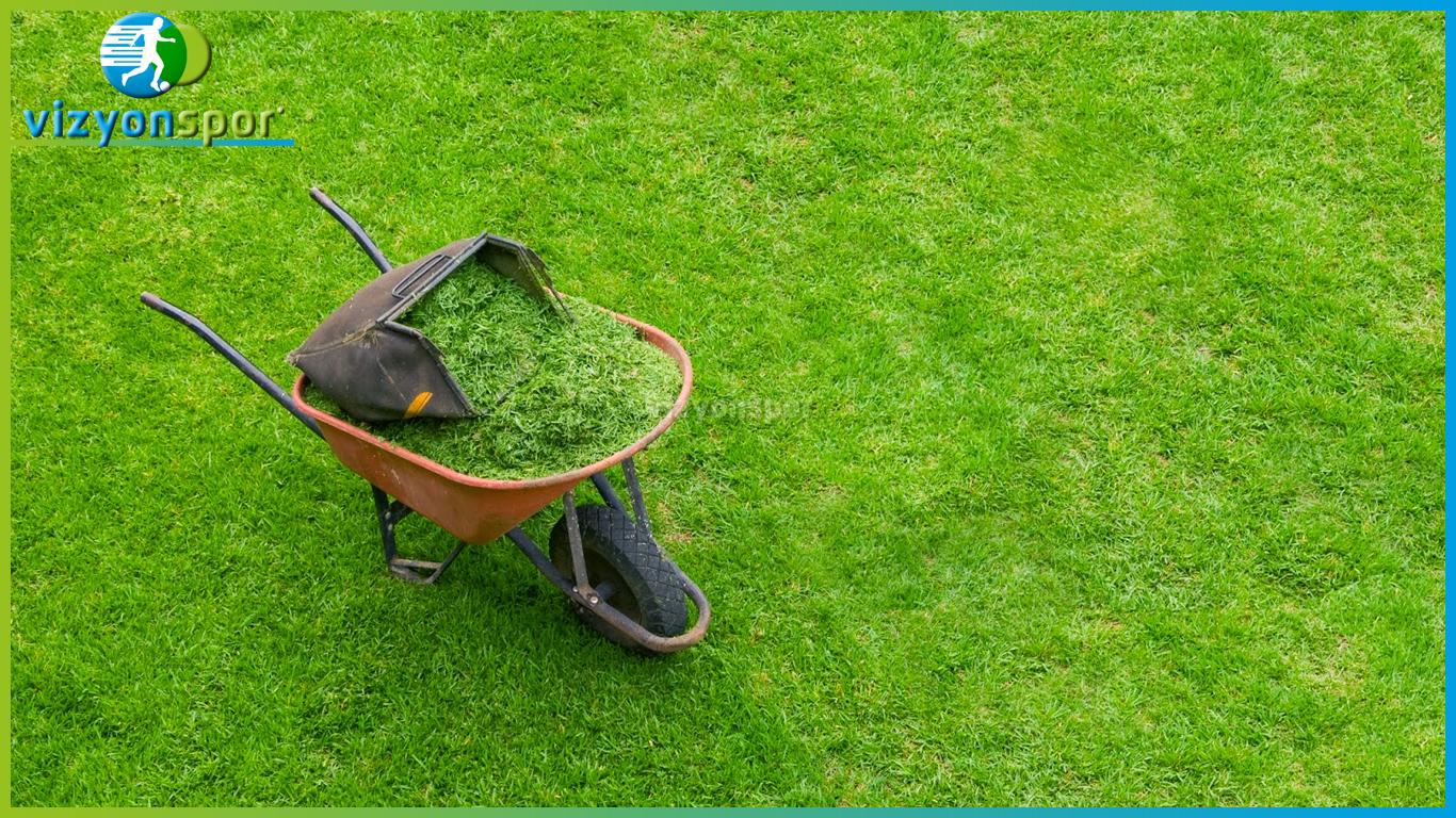 çim temizliği, hibrit çim temizliği,