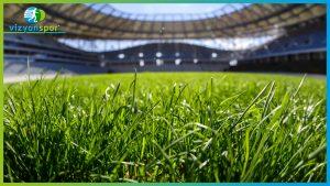doğal çim, gerçek çim,
